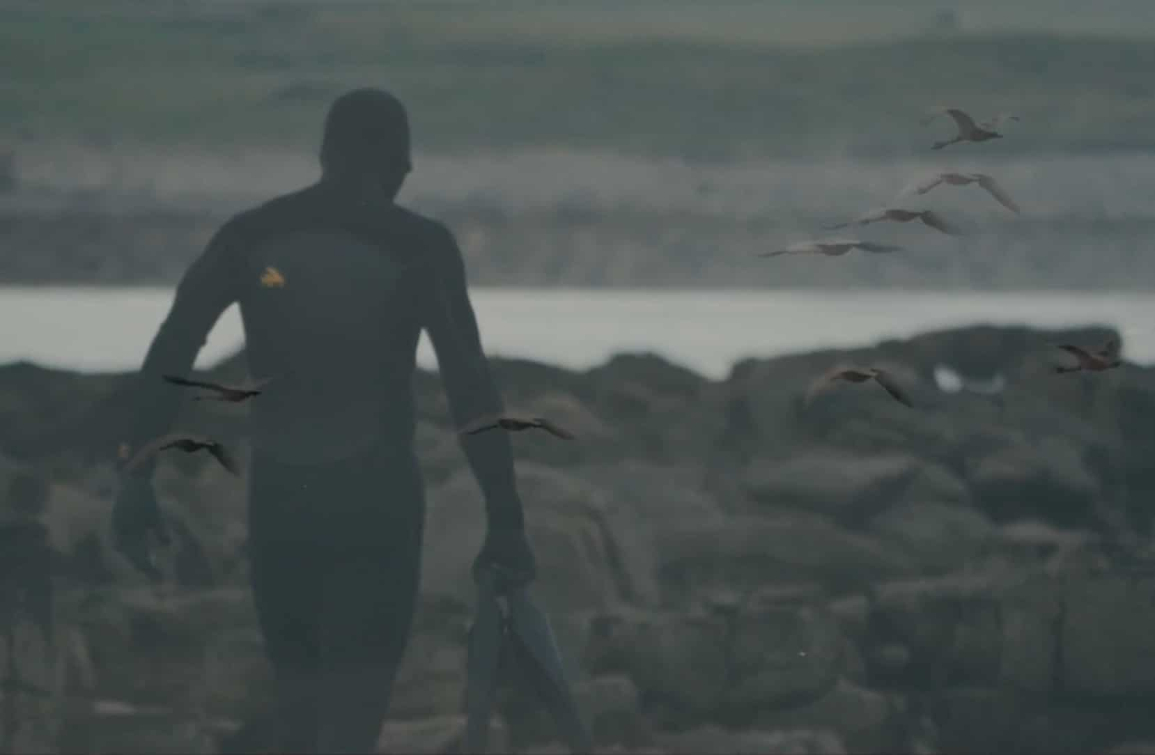 The Shorties entry: Shaka Status // A film by Chris Case / Fish Farm TV. When the fins are off in Ireland... Featuring Barry Mottershead & Dylan Stott
